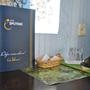 Гостиница Спутник, Одноместный эконом класс, фото 59