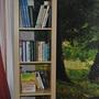 Гостиница Спутник, Библиотека, фото 64