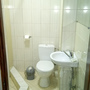 Гостевой дом Горный Воздух, Трёхместный стандартный номер, фото 28