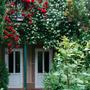 Гостиница Качинская, территория, фото 28