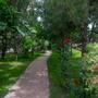 Гостиница Качинская, территория, фото 71