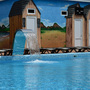 Гостиница Золотой Джин, Водопад, фото 7