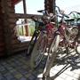 Мини-отель Экодом Белые росы, прокат велосипедов, фото 29