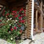 Мини-отель Экодом Белые росы, террасы, фото 35