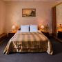 Гостиница Русь, Полулюкс с 1 кроватью, фото 9