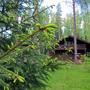 Отель Романов Лес, Территория, фото 26