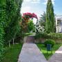 Гостиница Дионис, Территория, фото 9
