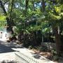 Гостиница Дом Садовника, фото 8